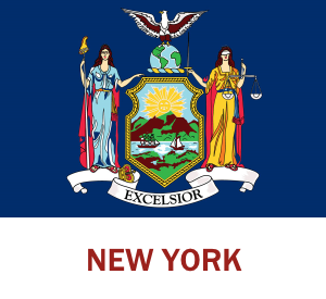 New York Hosting