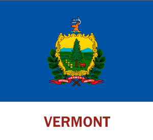 Vermont Hosting